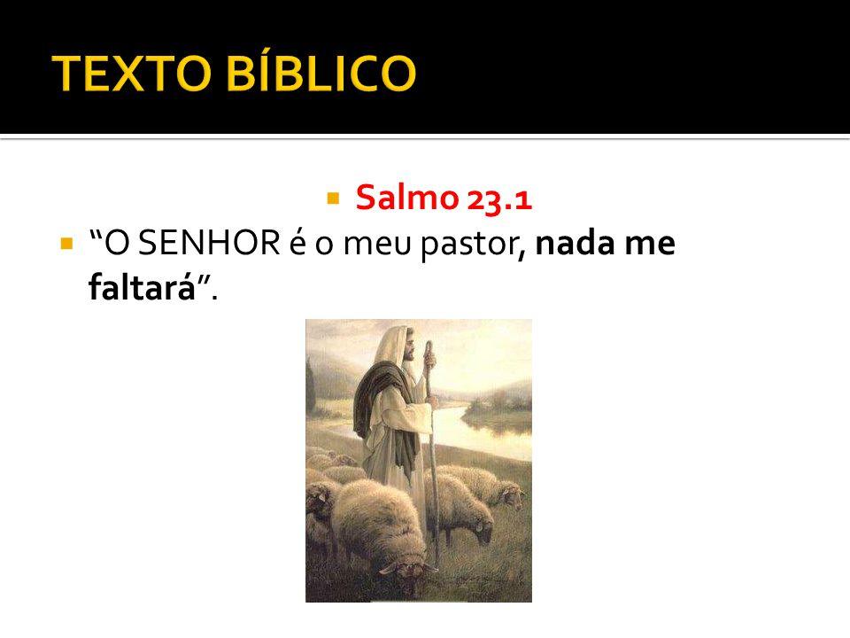 TEXTO BÍBLICO Salmo 23.1 O SENHOR é o meu pastor, nada me faltará .
