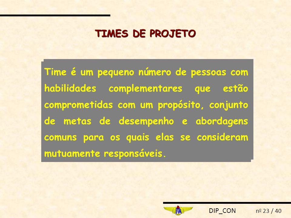 TIMES DE PROJETO