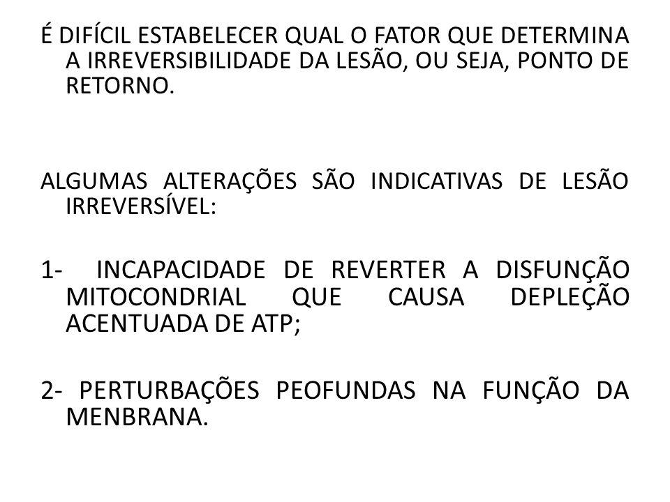 2- PERTURBAÇÕES PEOFUNDAS NA FUNÇÃO DA MENBRANA.