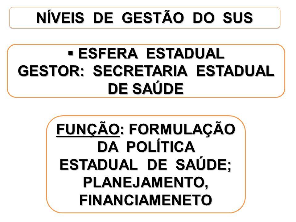 GESTOR: SECRETARIA ESTADUAL DE SAÚDE