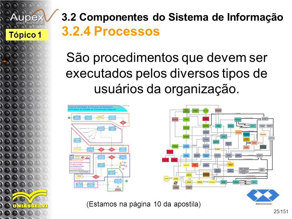 3.2 Componentes do Sistema de Informação 3.2.4 Processos