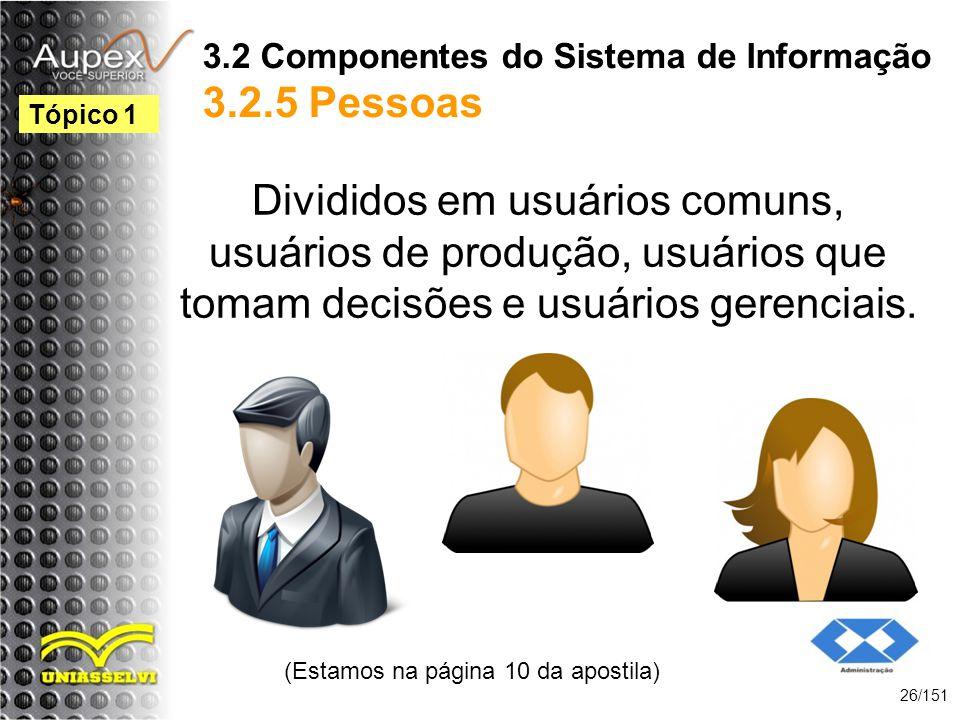 3.2 Componentes do Sistema de Informação 3.2.5 Pessoas