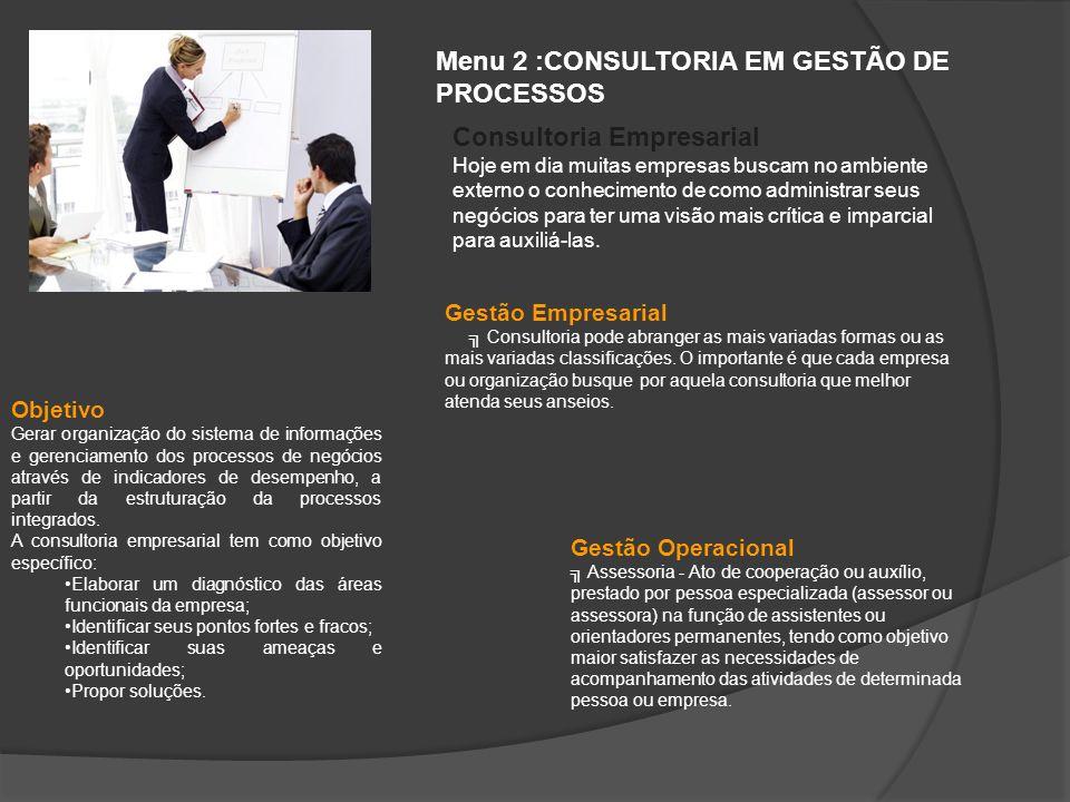 Menu 2 :CONSULTORIA EM GESTÃO DE PROCESSOS