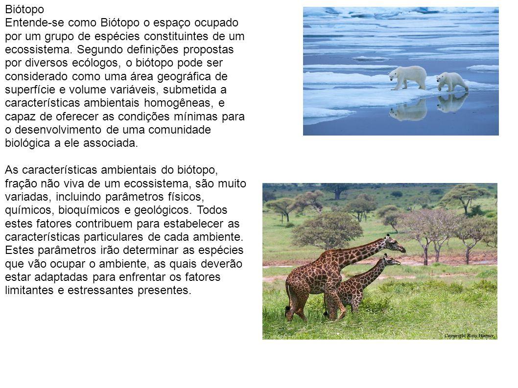 Biótopo Entende-se como Biótopo o espaço ocupado por um grupo de espécies constituintes de um ecossistema.