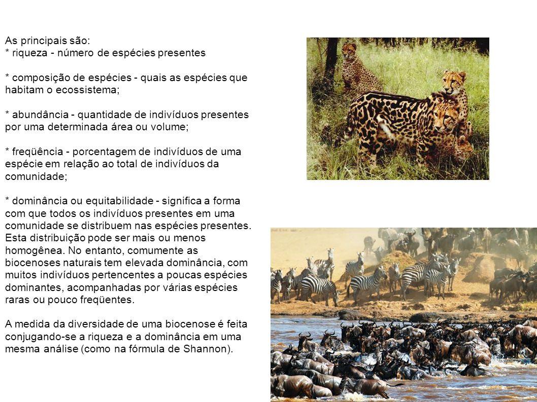 As principais são:. riqueza - número de espécies presentes
