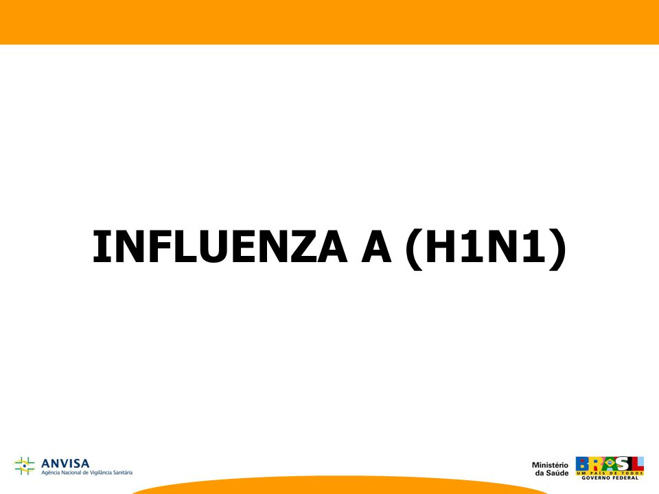 INFLUENZA A (H1N1) Lecture by the Minister of Health of Brazil, José Gomes Temporão (Brazil)