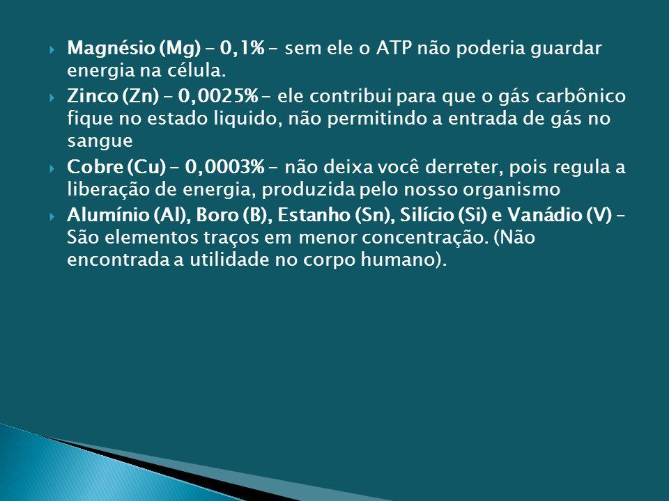 Magnésio (Mg) – 0,1% - sem ele o ATP não poderia guardar energia na célula.