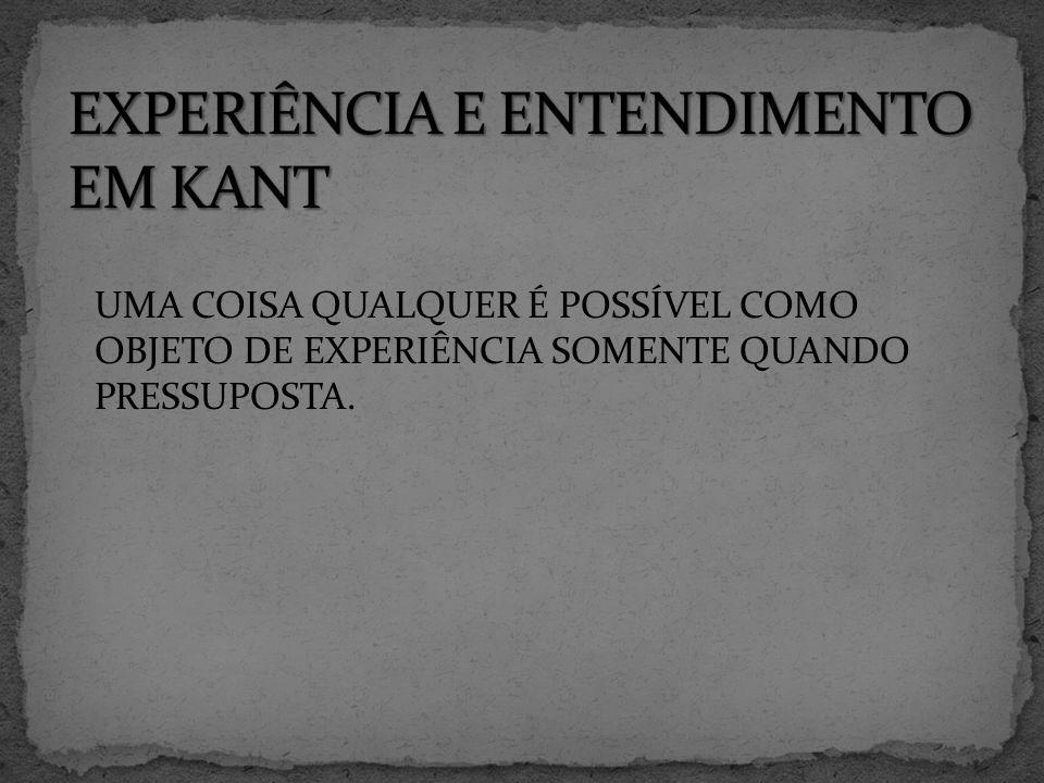 EXPERIÊNCIA E ENTENDIMENTO EM KANT