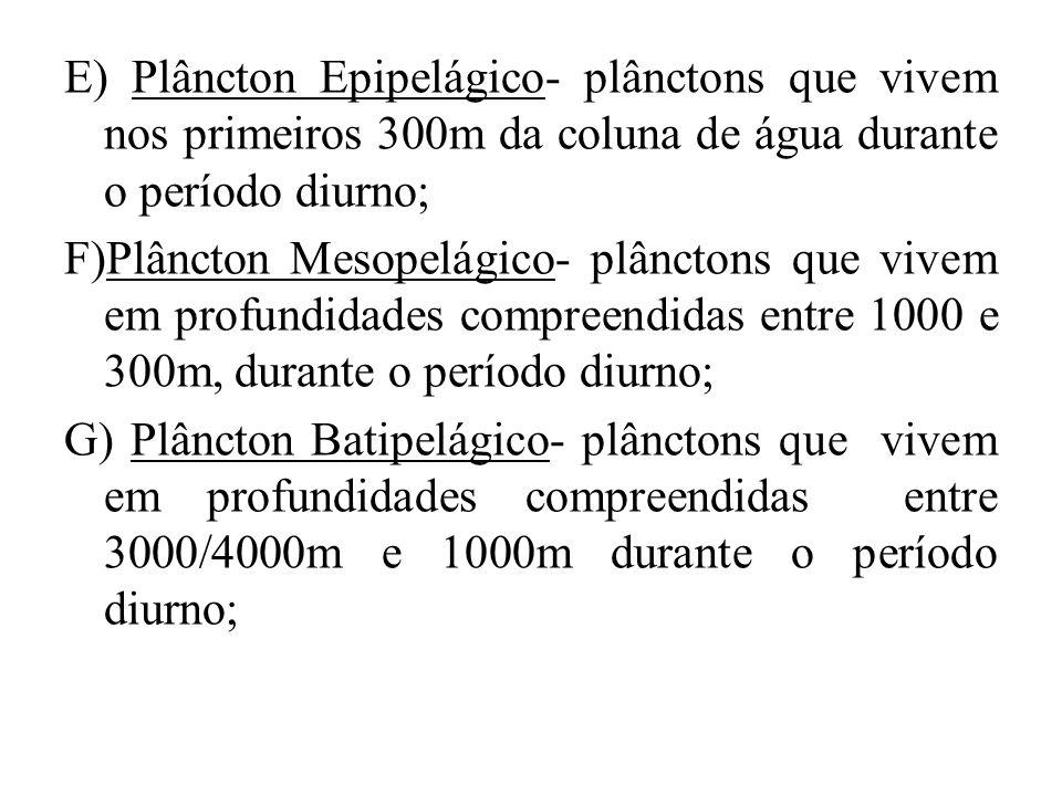 E) Plâncton Epipelágico- plânctons que vivem nos primeiros 300m da coluna de água durante o período diurno;