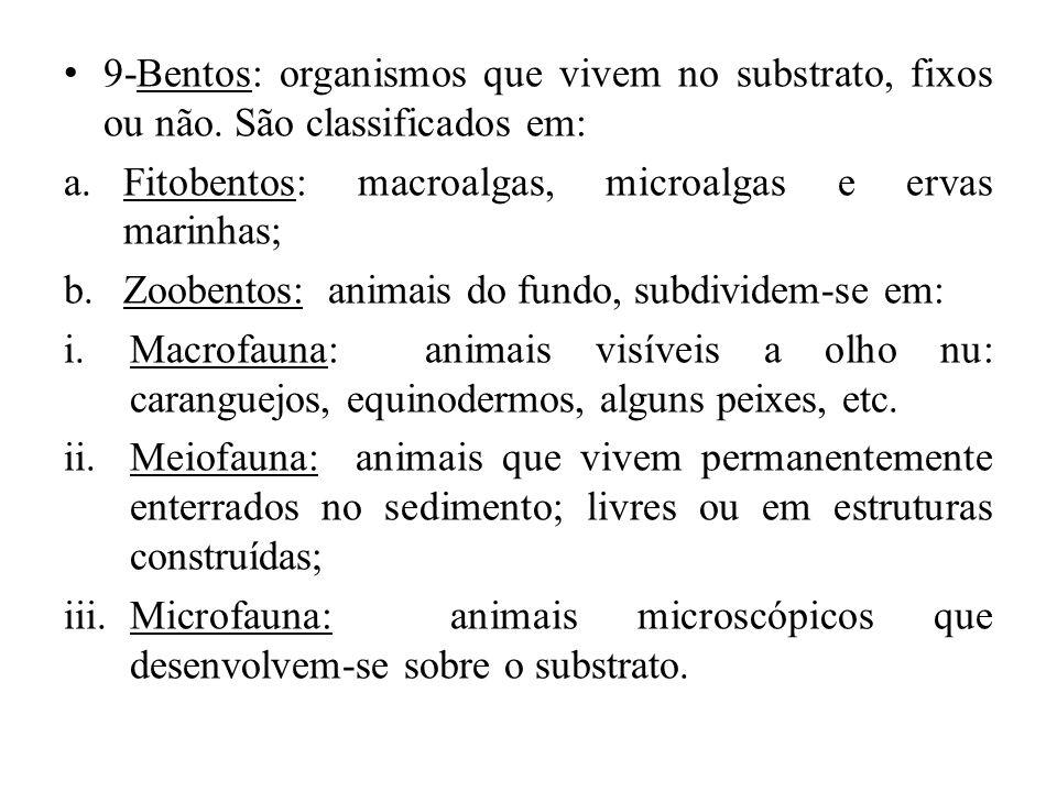 9-Bentos: organismos que vivem no substrato, fixos ou não