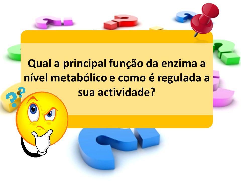 Qual a principal função da enzima a nível metabólico e como é regulada a sua actividade