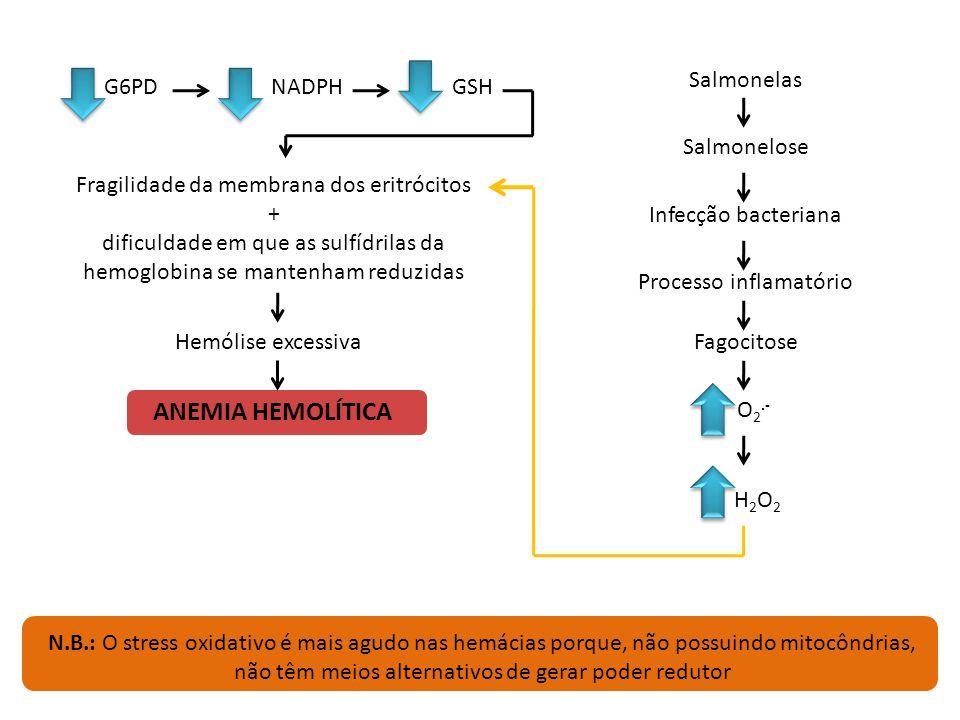 Nível baixo de glutatião oxidado são mais susceptíveis a hemólise