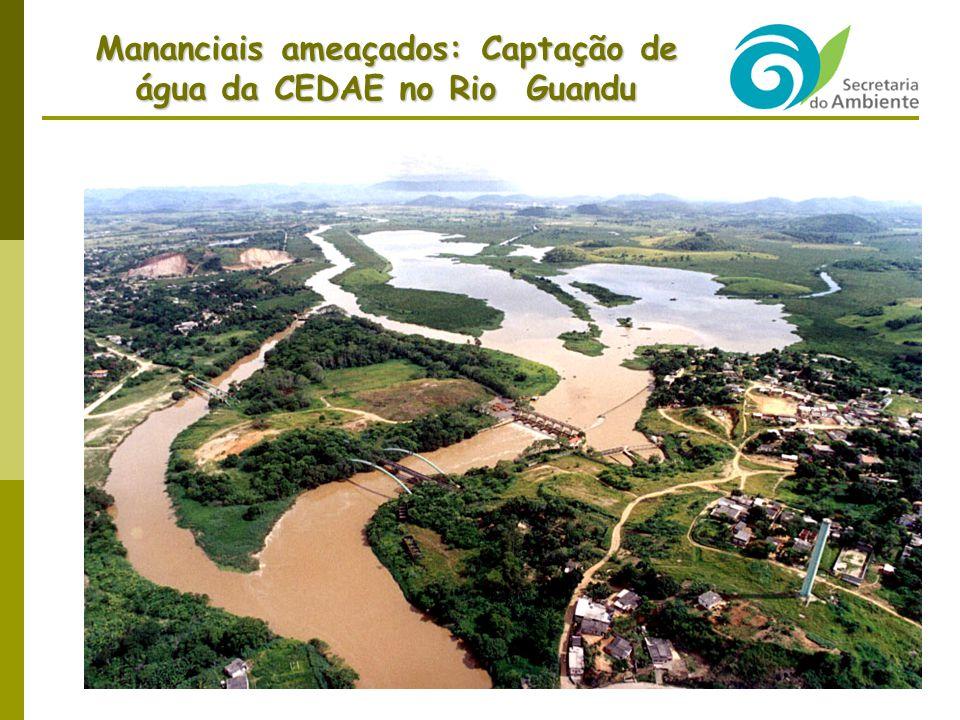 Mananciais ameaçados: Captação de água da CEDAE no Rio Guandu