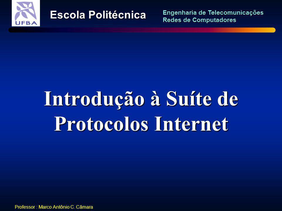 Introdução à Suíte de Protocolos Internet
