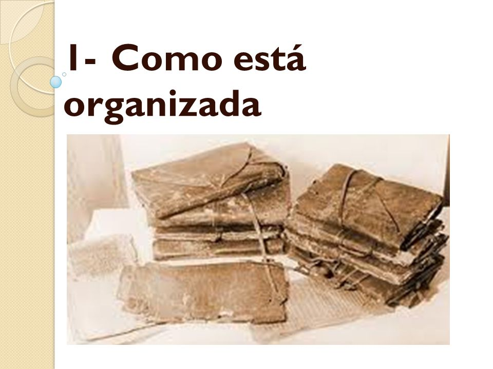 1- Como está organizada