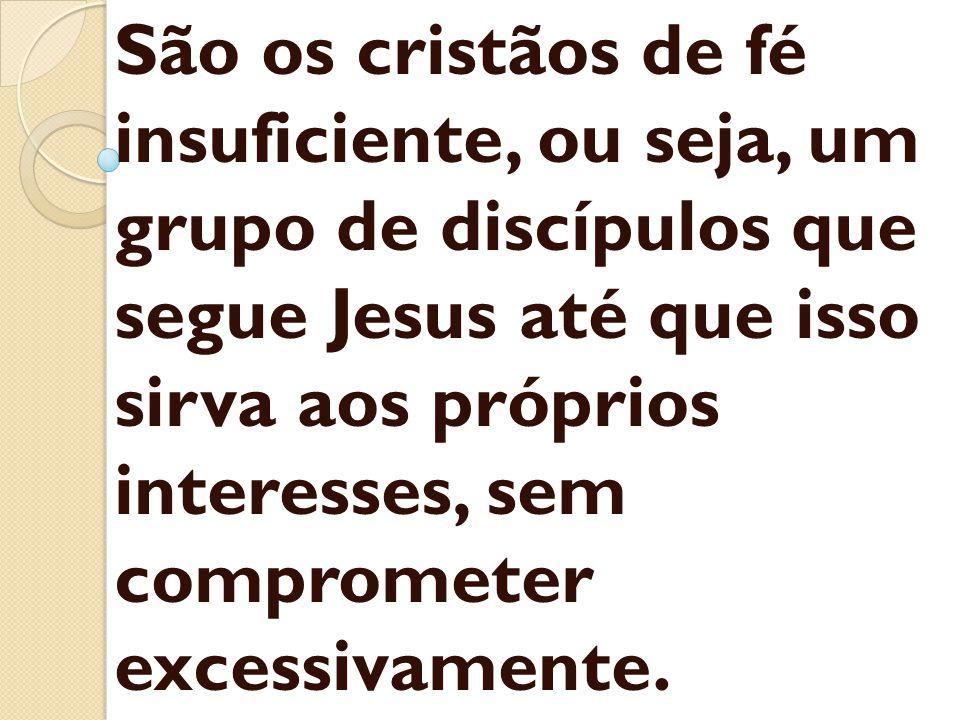 São os cristãos de fé insuficiente, ou seja, um grupo de discípulos que segue Jesus até que isso sirva aos próprios interesses, sem comprometer excessivamente.