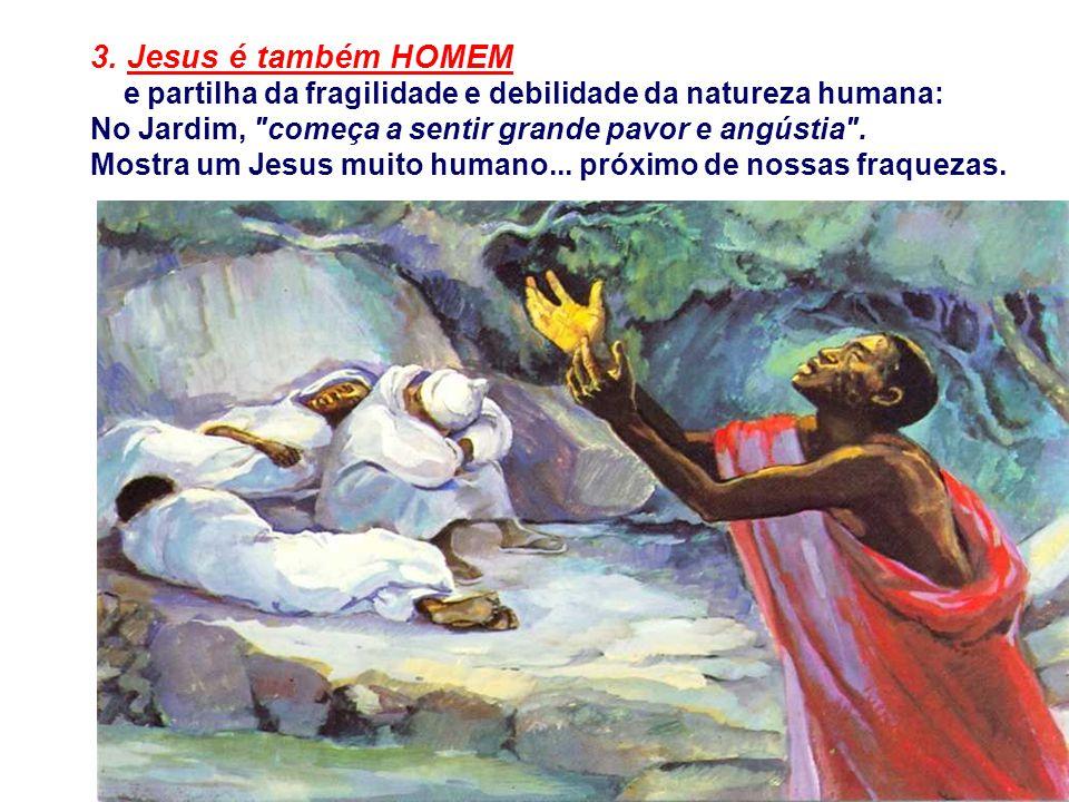3. Jesus é também HOMEM e partilha da fragilidade e debilidade da natureza humana: No Jardim, começa a sentir grande pavor e angústia .