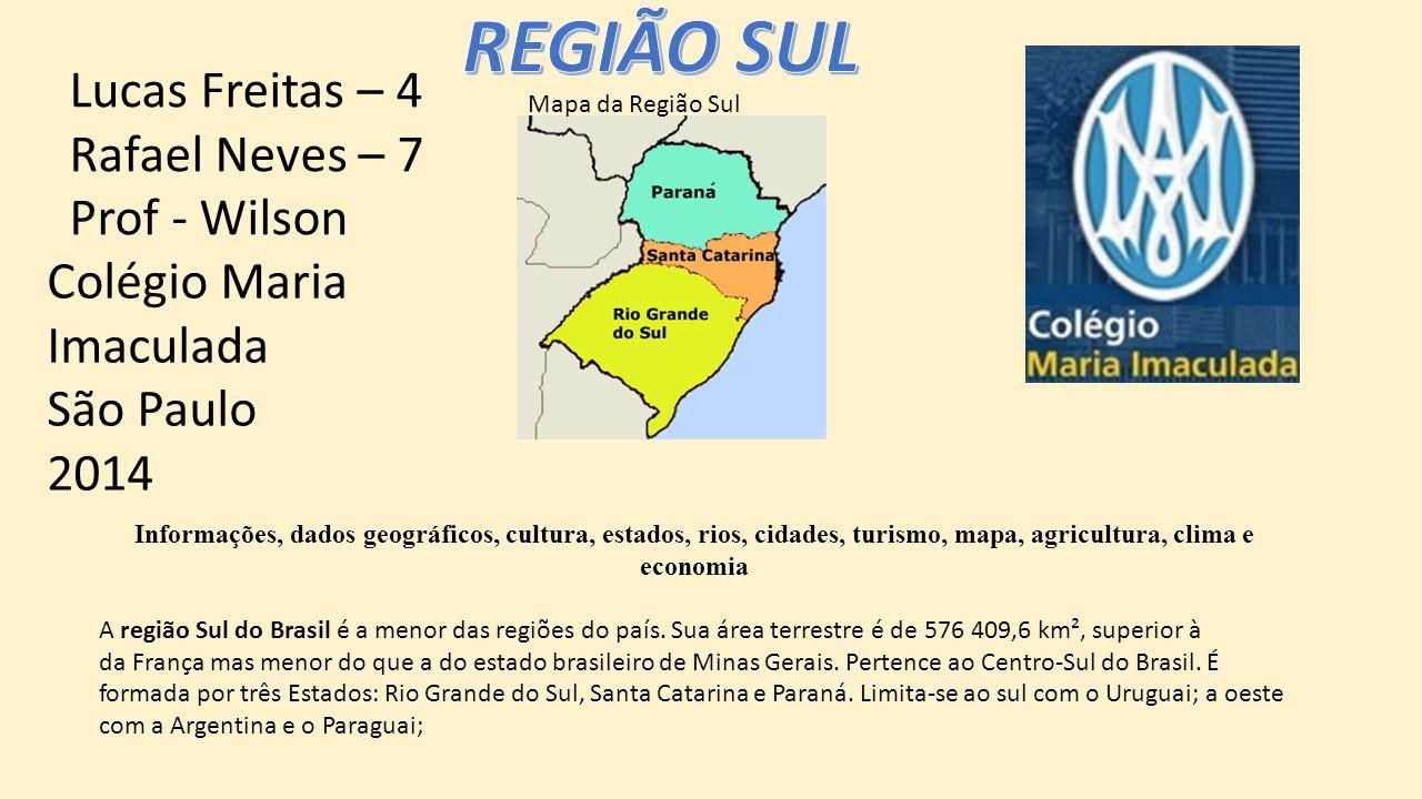 REGIÃO SUL Lucas Freitas – 4 Rafael Neves – 7 Prof - Wilson