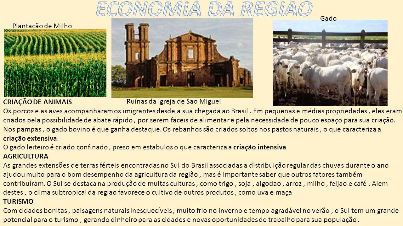 ECONOMIA DA REGIAO Gado Plantação de Milho CRIAÇÃO DE ANIMAIS