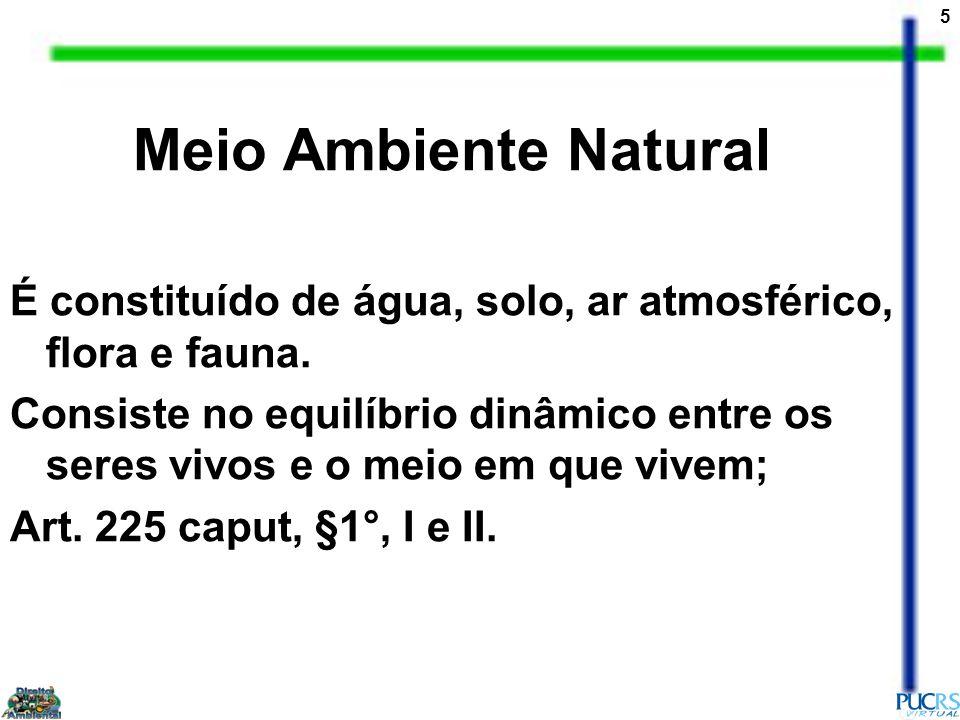 Meio Ambiente Natural É constituído de água, solo, ar atmosférico, flora e fauna.