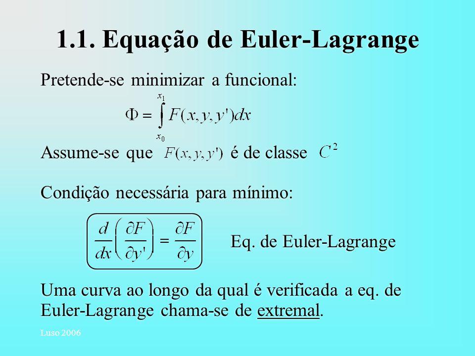 1.1. Equação de Euler-Lagrange