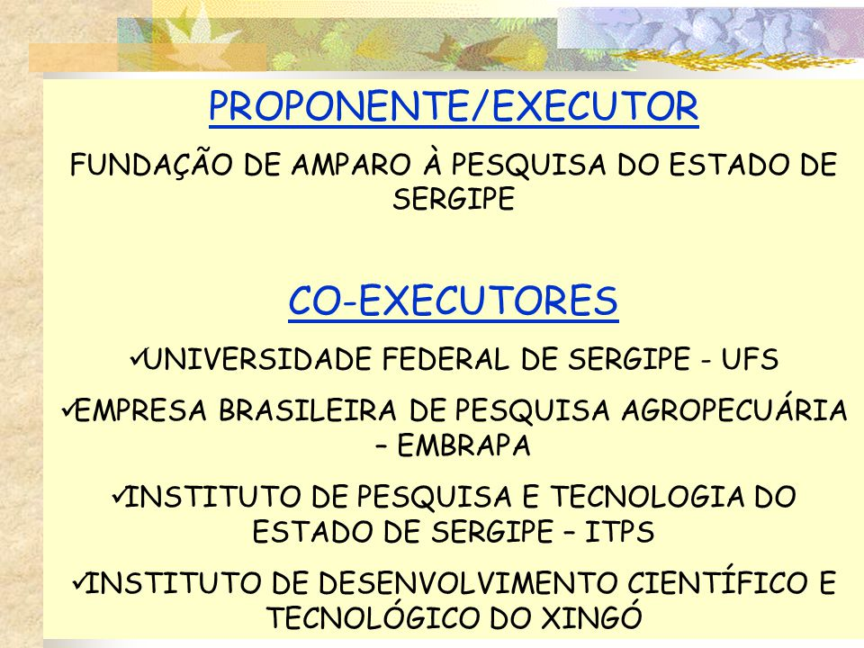 PROPONENTE/EXECUTOR CO-EXECUTORES
