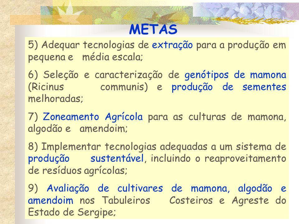 METAS 5) Adequar tecnologias de extração para a produção em pequena e média escala;