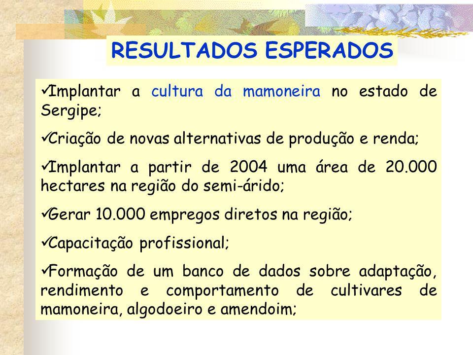 RESULTADOS ESPERADOS Implantar a cultura da mamoneira no estado de Sergipe; Criação de novas alternativas de produção e renda;