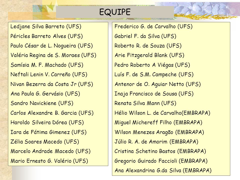 EQUIPE Ledjane Silva Barreto (UFS) Péricles Barreto Alves (UFS)