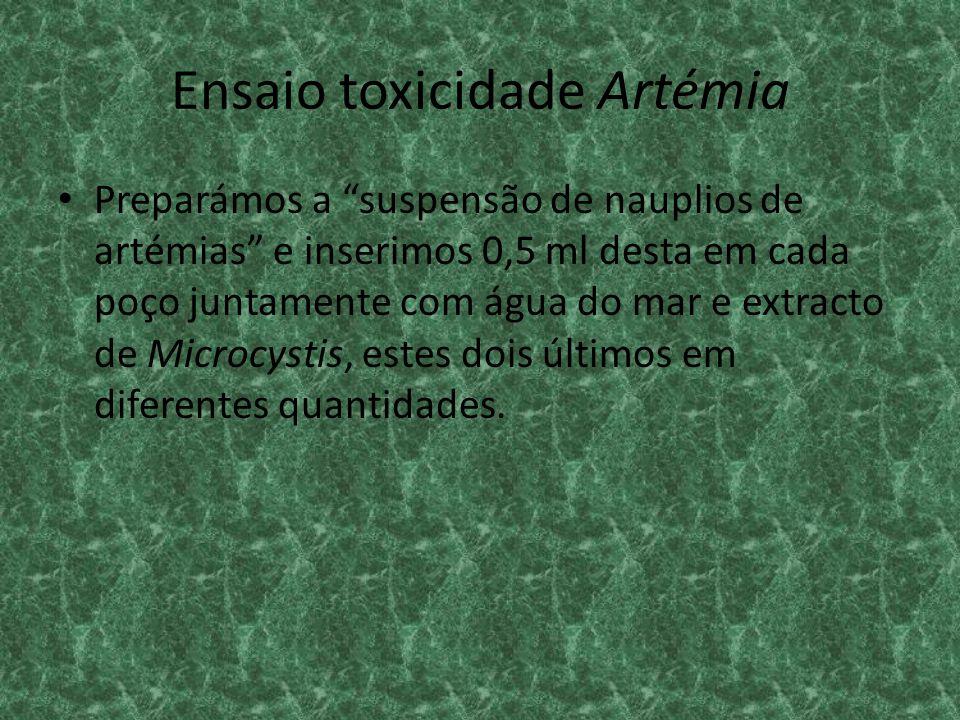 Ensaio toxicidade Artémia