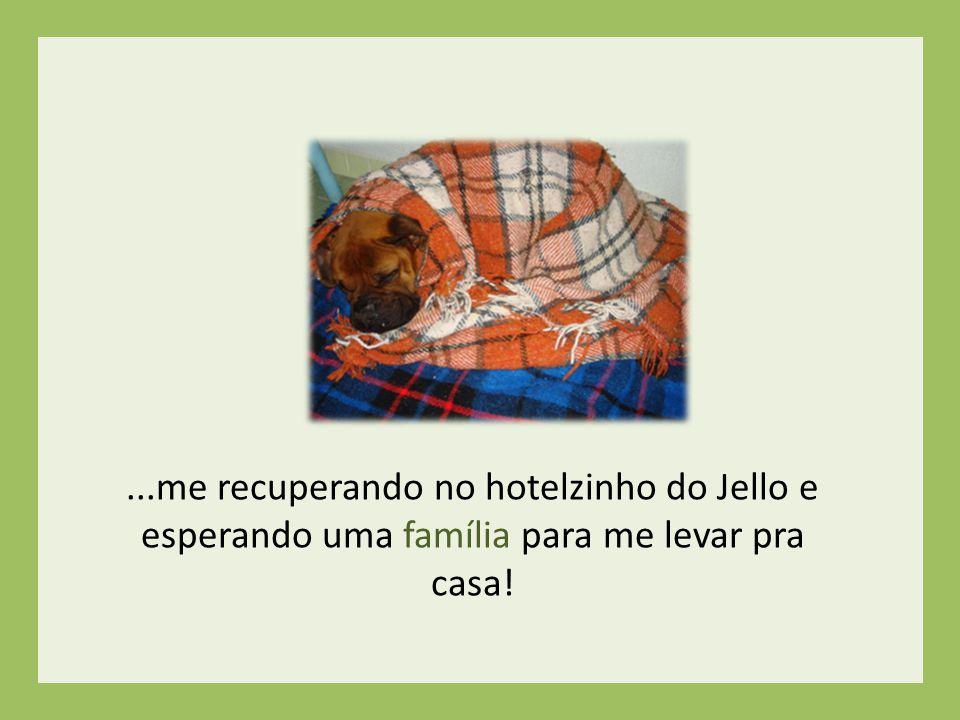 ...me recuperando no hotelzinho do Jello e esperando uma família para me levar pra casa!