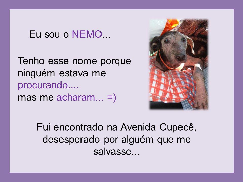 Eu sou o NEMO... Tenho esse nome porque. ninguém estava me. procurando.... mas me acharam... =)