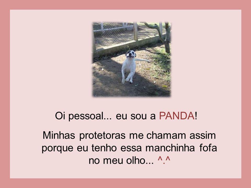Oi pessoal... eu sou a PANDA!