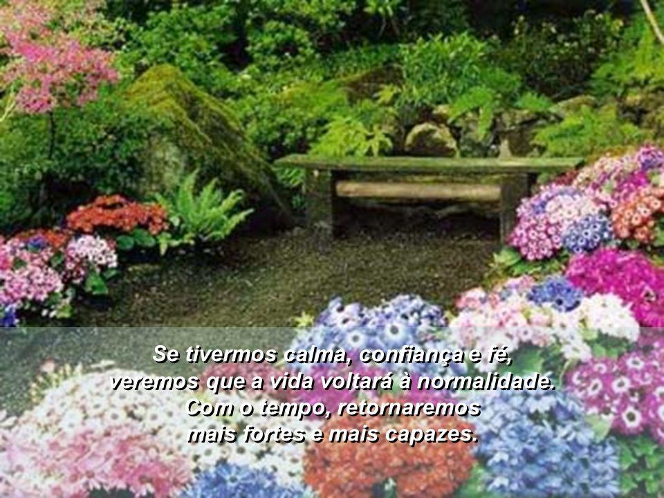 Se tivermos calma, confiança e fé, veremos que a vida voltará à normalidade.