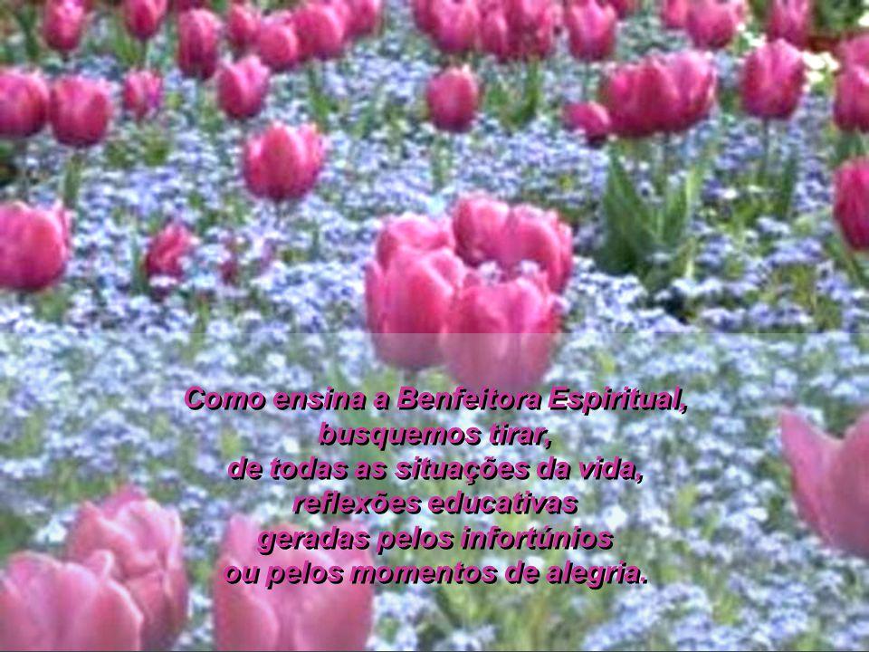 Como ensina a Benfeitora Espiritual, busquemos tirar, de todas as situações da vida, reflexões educativas geradas pelos infortúnios ou pelos momentos de alegria.