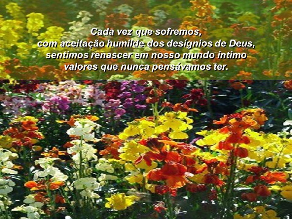 Cada vez que sofremos, com aceitação humilde dos desígnios de Deus, sentimos renascer em nosso mundo íntimo valores que nunca pensávamos ter.