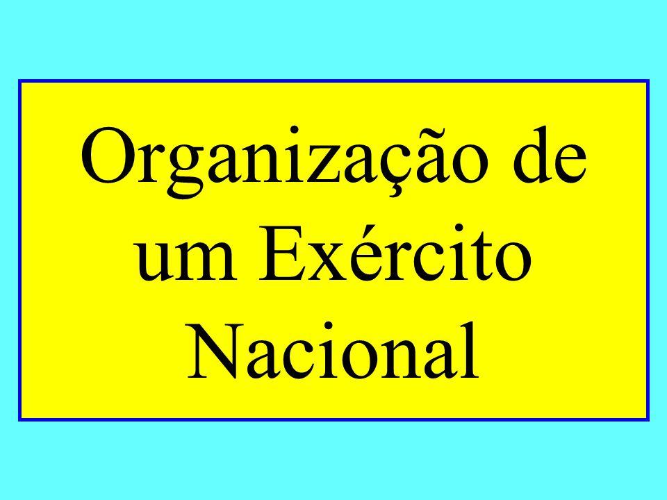 Organização de um Exército Nacional