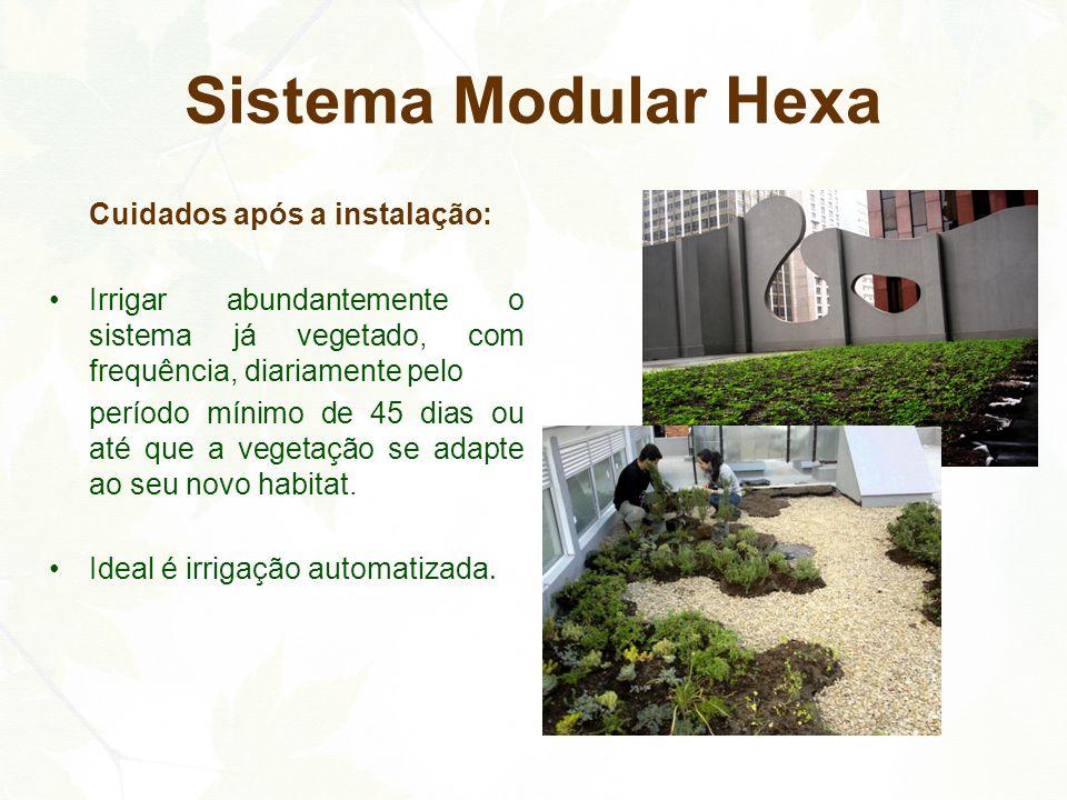 Sistema Modular Hexa Cuidados após a instalação: