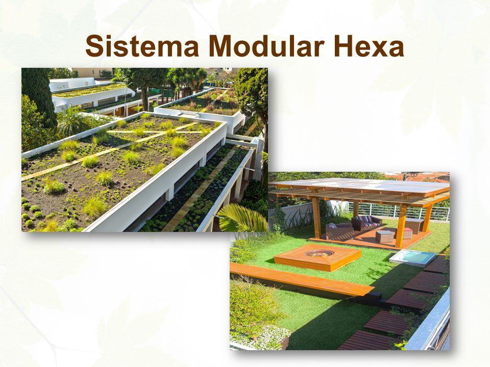 Sistema Modular Hexa