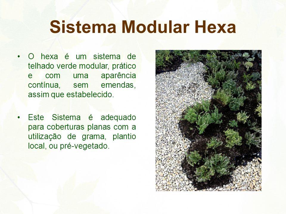 Sistema Modular Hexa O hexa é um sistema de telhado verde modular, prático e com uma aparência contínua, sem emendas, assim que estabelecido.