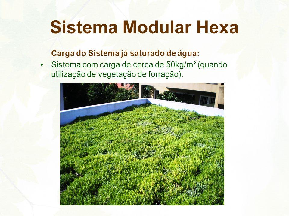 Sistema Modular Hexa Carga do Sistema já saturado de água: