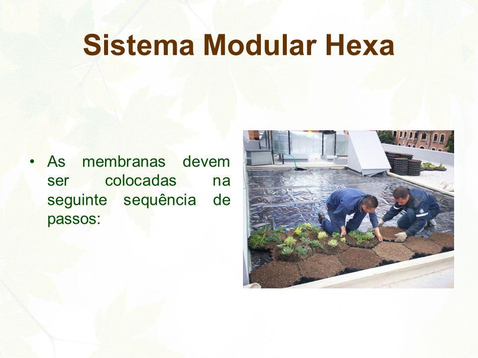 Sistema Modular Hexa As membranas devem ser colocadas na seguinte sequência de passos: