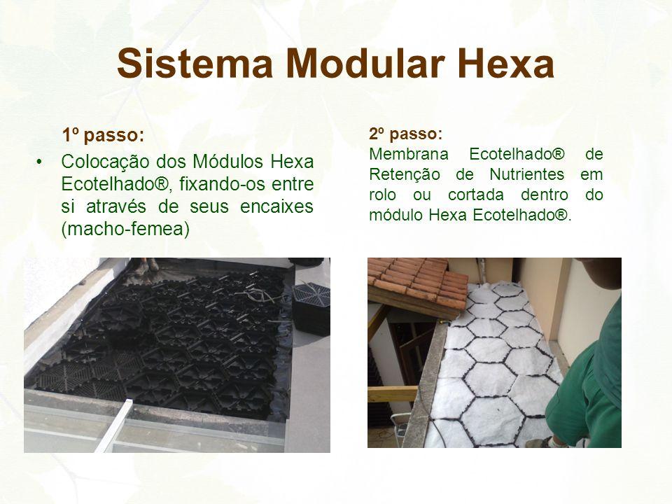 Sistema Modular Hexa 1º passo: