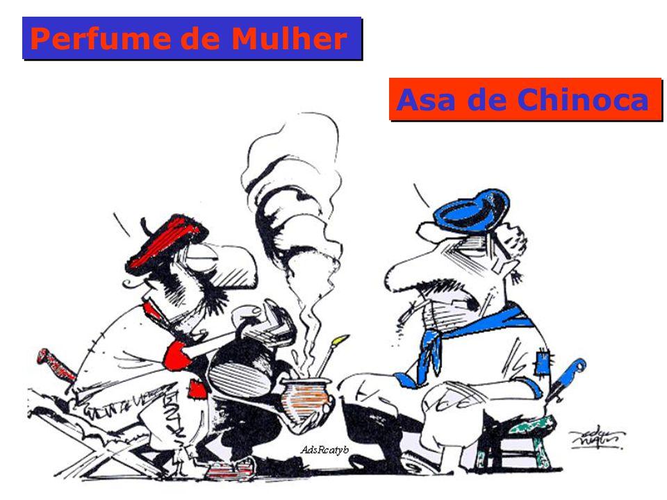 Perfume de Mulher Asa de Chinoca