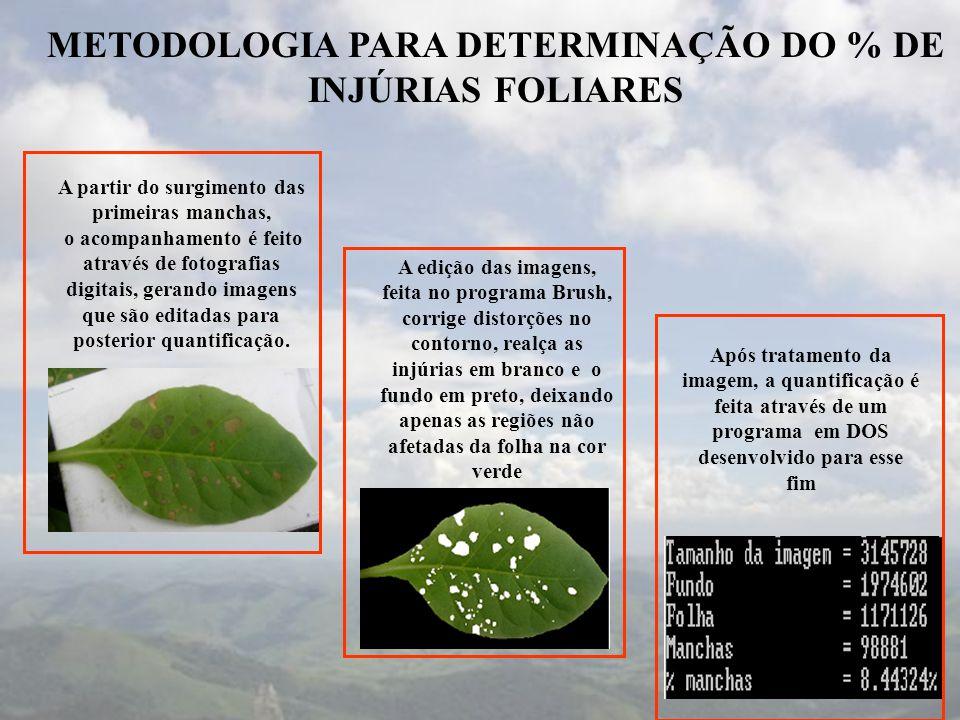 METODOLOGIA PARA DETERMINAÇÃO DO % DE INJÚRIAS FOLIARES