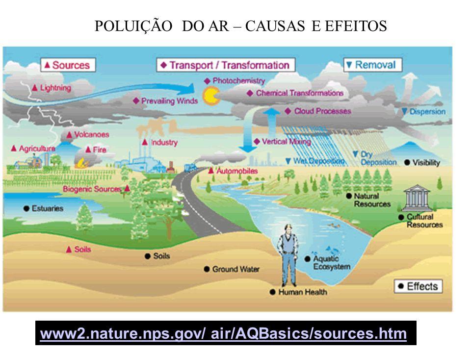 POLUIÇÃO DO AR – CAUSAS E EFEITOS
