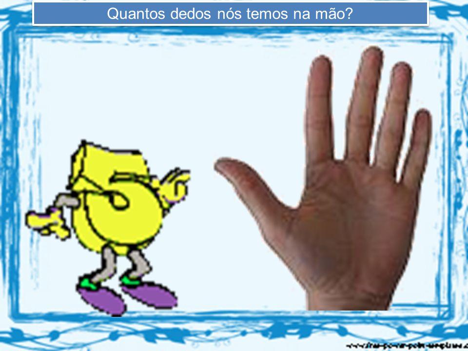 Quantos dedos nós temos na mão