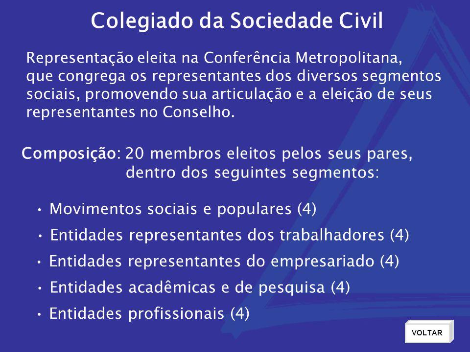 Colegiado da Sociedade Civil