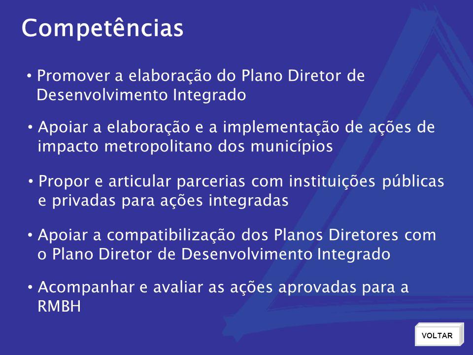 Competências Promover a elaboração do Plano Diretor de