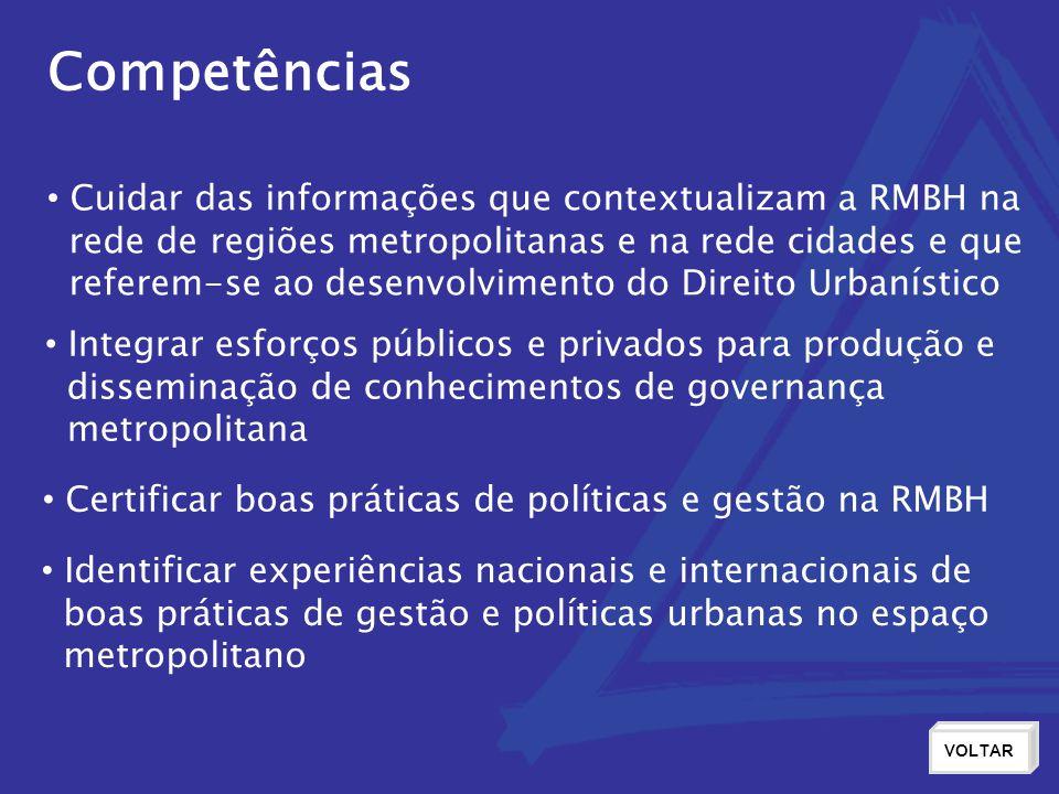 Competências Cuidar das informações que contextualizam a RMBH na